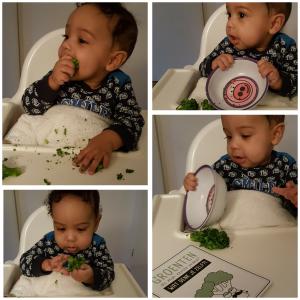 Eerste hapje met 6 maanden: broccoli